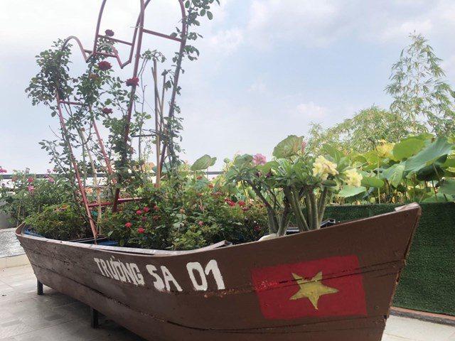 Bố Sài Gòn biến sân thượng thành vườn rau, ăn không hết phải nài nỉ hàng xóm sang lấy về - 8