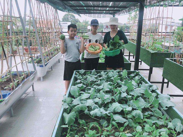 Bố Sài Gòn biến sân thượng thành vườn rau, ăn không hết phải nài nỉ hàng xóm sang lấy về - 10