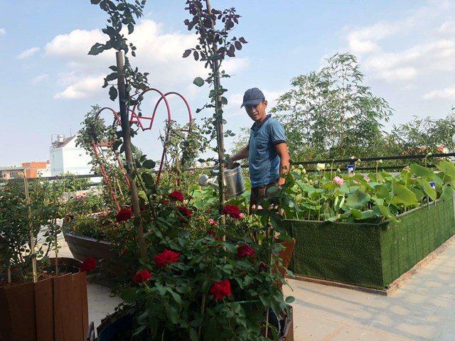 Bố Sài Gòn biến sân thượng thành vườn rau, ăn không hết phải nài nỉ hàng xóm sang lấy về - 5