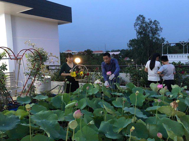 Bố Sài Gòn biến sân thượng thành vườn rau, ăn không hết phải nài nỉ hàng xóm sang lấy về - 7