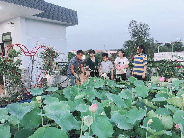 Bố Sài Gòn biến sân thượng thành vườn rau, ăn không hết phải nài nỉ hàng xóm sang lấy về - 1