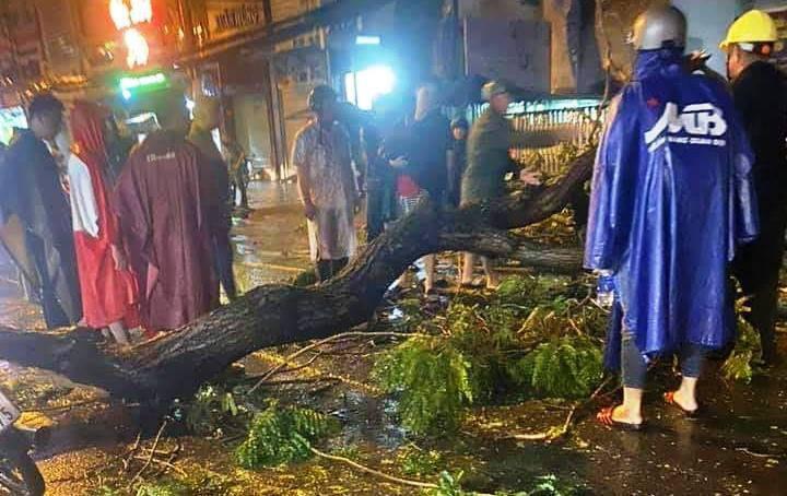 Cây cổ thụ đổ trong cơn mưa tầm tã, đè chết một người đi đường ở TP.HCM