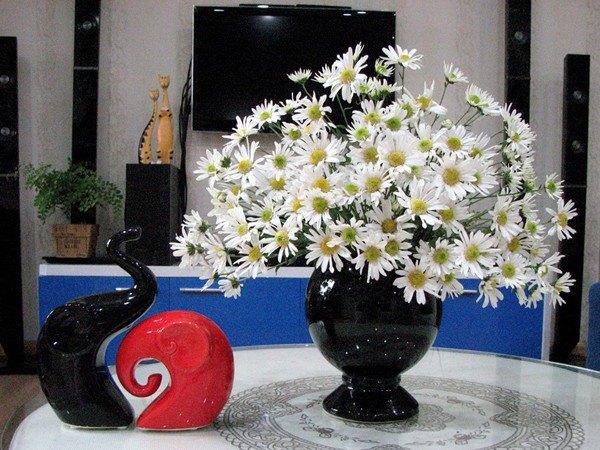 7 loại hoa đẹp hợp để phòng khách, mẹ mua ngay để hút tài lộc về nhà - ảnh 4