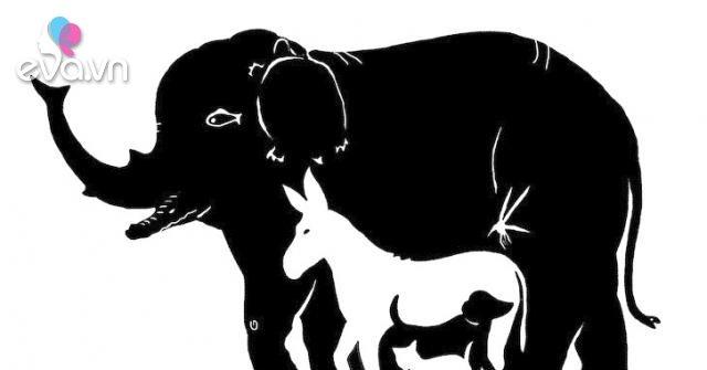 Có bao nhiêu con vật trong bức tranh khó nhằn này? Câu trả lời tiết lộ tương lai giàu có