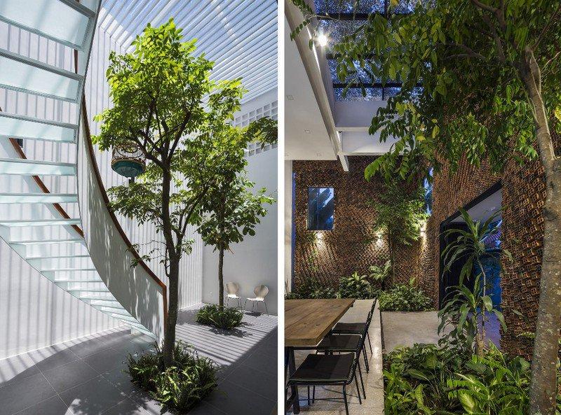 Bí quyết chọn cây xanh trong nhà