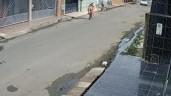 Bé gái lái xe đạp băng qua đường thiếu quan sát suýt bị ô tô đâm