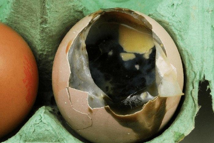 Mua trứng, thấy 4 dấu hiệu này nên tránh xa, vừa hại sức khỏe lại tốn tiền - 4