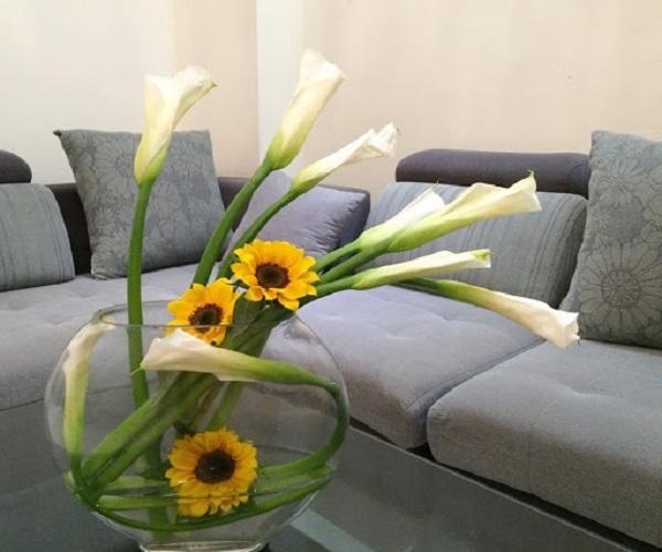 Hoa Rum - Đặc điểm, ý nghĩa, cách trồng và chăm sóc cây ra hoa đẹp - 6