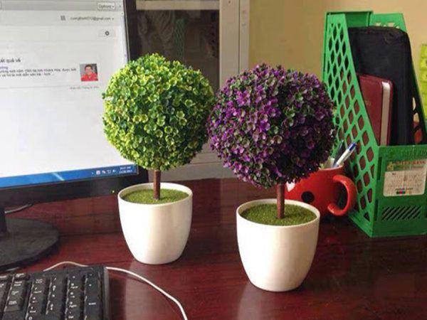 Đừng để những thứ này trong văn phòng, nếu không sẽ tiếc đứt ruột - 1