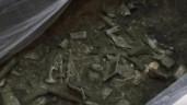 Bí ẩn về di chỉ khảo cổ liên quan đến tàn tích người ngoài hành tinh dù gây tranh cãi