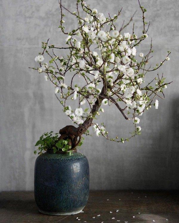 Nhà Celeb: Diva Hồng Nhung thảnh thơi cắm hoa, tới hoa hậu cũng khen không ngớt - 14