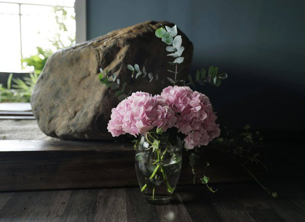Nhà Celeb: Diva Hồng Nhung thảnh thơi cắm hoa, tới hoa hậu cũng khen không ngớt - 6
