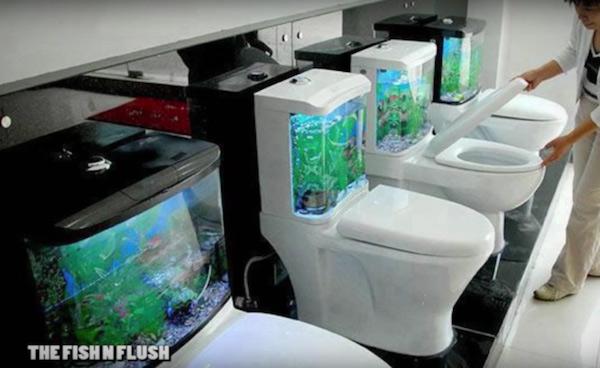 thiết bị vệ sinh độc và lạ 4