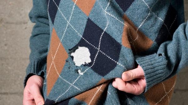 Trong nhà xuất hiện những túi nhỏ hình bầu dục thế này phải vứt ngay, lý do cực sốc - 4