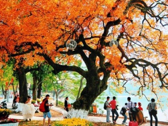 Du lịch mùa thu, sao có thể bỏ lỡ những điểm đến lãng mạn nhất châu Á này?