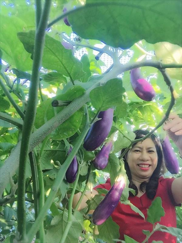 chi 40m² san thuong, me ha noi gay bat ngo voi vuon ngap rau trai, ga, trung an quanh nam - 10