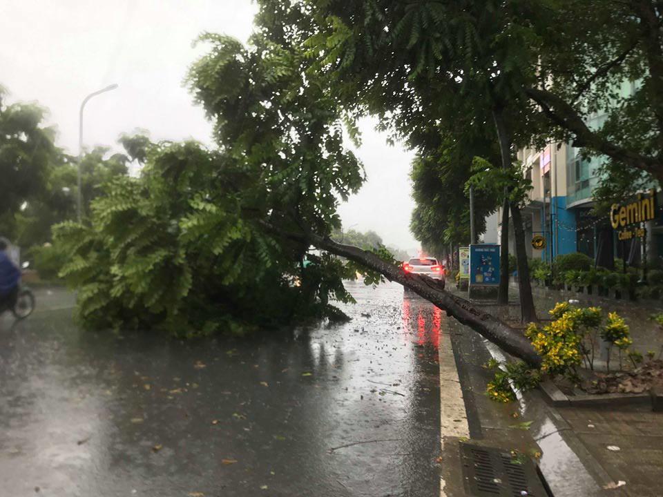 Ảnh hưởng bão số 3, Hà Nội nhiều tuyến đường ngập nước, gió lớn quật cây cối ngổn ngang
