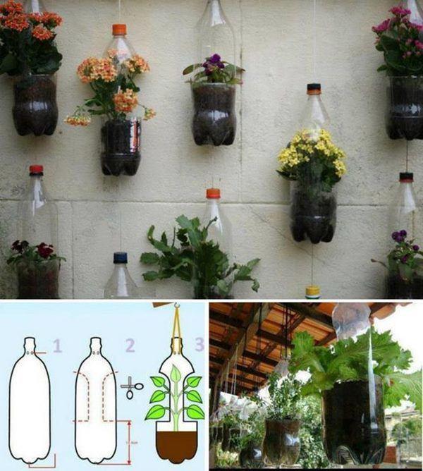 Bí quyết trồng cây từ vỏ chai nhựa không tốn 1 xu, quanh năm vẫn có rau ăn đủ - 7