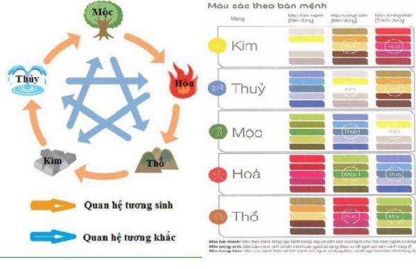 nguoi menh moc hop mau gi giup lam an hanh thong, su nghiep thang tien? - 1