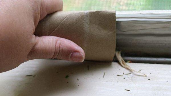 Lõi giấy vệ sinh chớ vội vứt, giữ lại làm theo cách này có tác dụng ngang tiền triệu - 6