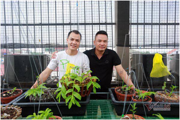 Hai đại gia lan hiếm ở Hà Nội: Vô tình kiếm tiền tỷ trong lúc thất nghiệp