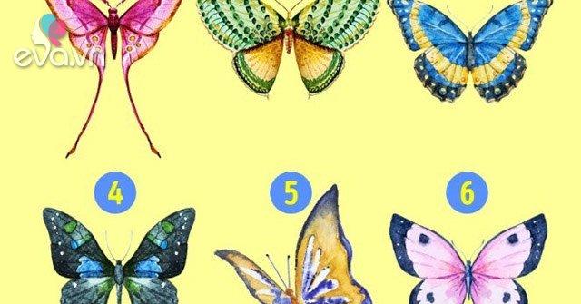 Bạn là loài bướm nào? Câu trả lời tiết lộ điều ẩn sâu trong con người bạn
