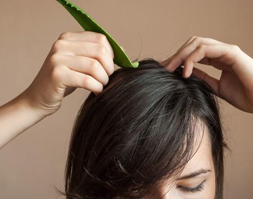 Học Hồ Ngọc Hà ủ tóc với nguyên liệu rẻ tiền, vừa dễ kiếm vừa chăm tóc đẹp đỉnh cao