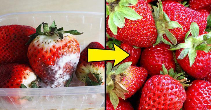 Mẹo cực hay khi nấu ăn: Tách lòng đỏ trứng, mài dao, khử mùi tủ lạnh dễ như ăn kẹo - 11