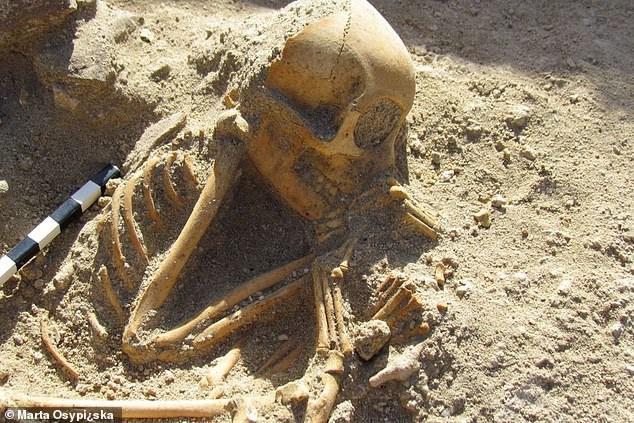 Hài cốt amp;#34;đứa trẻ ngủamp;#34; 2.000 tuổi gây sốc vì… không phải người - 1