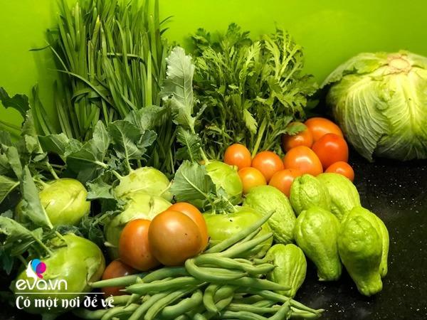 Bố Hà Nội vác 5 tấn đất lên sân thượng trồng rau, phun amp;#34;nước thầnamp;#34; cây tốt ngồn ngộn - 13