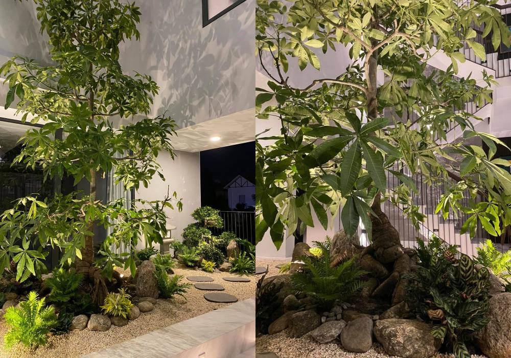 Góc vườn sang chảnh chuẩn nhà giàu trong biệt thự triệu đô của Cường Đô La và dàn sao Việt - 3