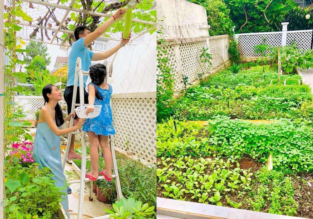Góc vườn sang chảnh chuẩn nhà giàu trong biệt thự triệu đô của Cường Đô La và dàn sao Việt - 8