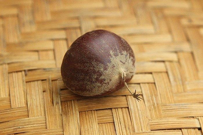 Mua hạt dẻ, chọn hạt cái mới thơm bùi ngọt, hạt đực ít thịt lại kém ngon-5