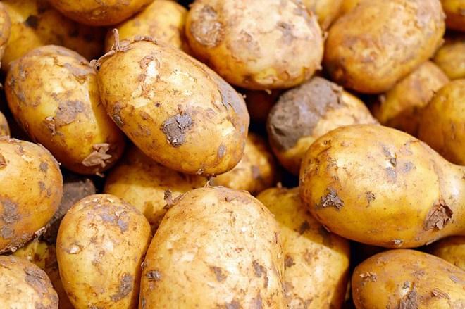 7 thực phẩm đừng bao giờ cất trong tủ lạnh vừa mất sạch dinh dưỡng lại sinh độc tố - 1