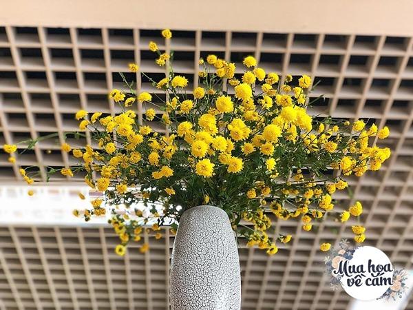 Không nước rửa bát, chẳng dùng đường, đây mới là thứ giúp mẹ Hà Nội cắm hoa không thối hỏng - 4