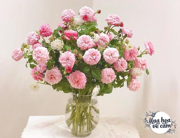 Không nước rửa bát, chẳng dùng đường, đây mới là thứ giúp mẹ Hà Nội cắm hoa không thối hỏng - 21