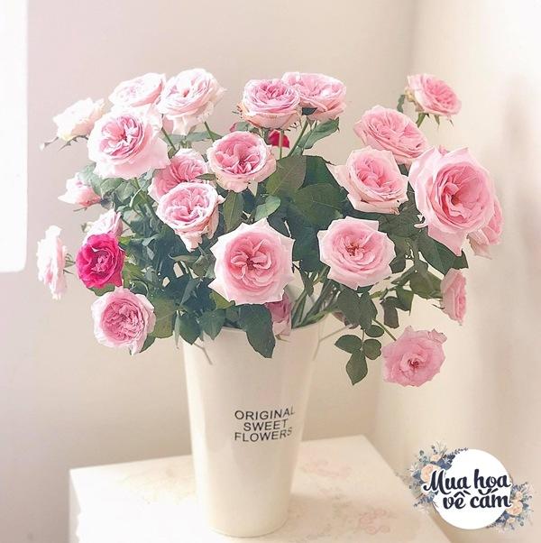 Không nước rửa bát, chẳng dùng đường, đây mới là thứ giúp mẹ Hà Nội cắm hoa không thối hỏng - 14