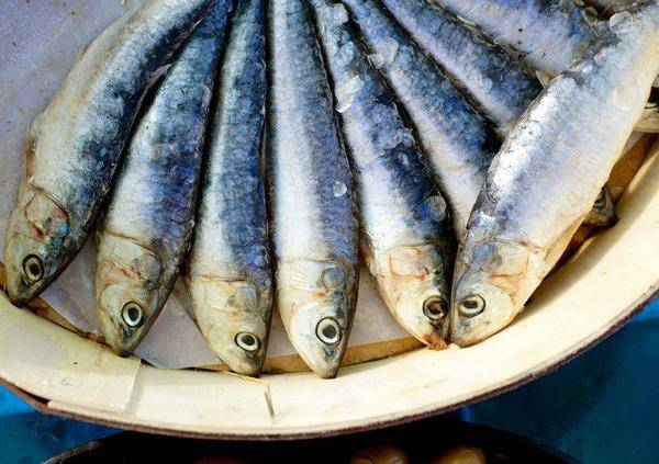 Ăn cá giúp trẻ thông minh nhưng 3 loại cá này nếu ăn nhiều dễ hỏng não lại ung thư - 1