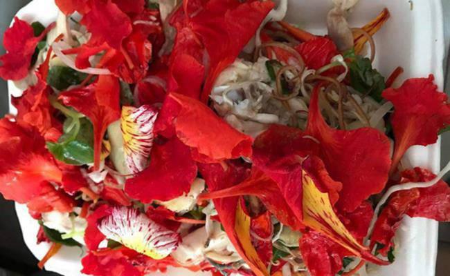 Ở Việt Nam có 5 loại hoa ăn được, giá chỉ vỏn vẹn... 0 đồng - 5