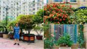 Sao Việt 24h: Vườn cây cảnh tuyệt đẹp trước cửa căn nhà 7 tỷ của nghệ sĩ Quang Tèo