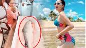 Bị chê mặt béo trên tivi, Bảo Thy được ông xã tặng cá hồi tận 7kg để giảm cân