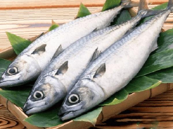 3 cách làm cá thu kho thơm ngon, đậm đà hương vị cho bữa ăn gia đình - 1