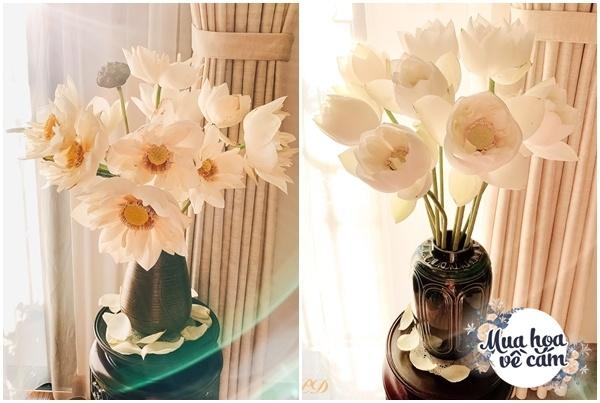 Cắm hoa tươi sợ nhanh héo, cô giáo Hà Nội mách chỗ đặt bình chơi được 2 tuần - 12