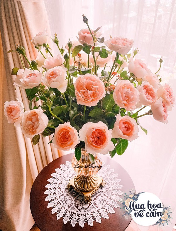 Cắm hoa tươi sợ nhanh héo, cô giáo Hà Nội mách chỗ đặt bình chơi được 2 tuần - 11