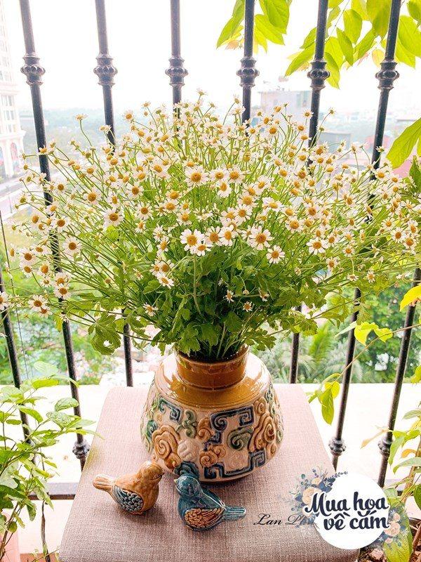 Cắm hoa tươi sợ nhanh héo, cô giáo Hà Nội mách chỗ đặt bình chơi được 2 tuần - 15