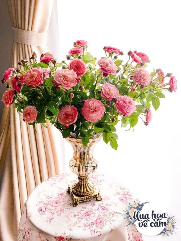 Cắm hoa tươi sợ nhanh héo, cô giáo Hà Nội mách chỗ đặt bình chơi được 2 tuần - 19