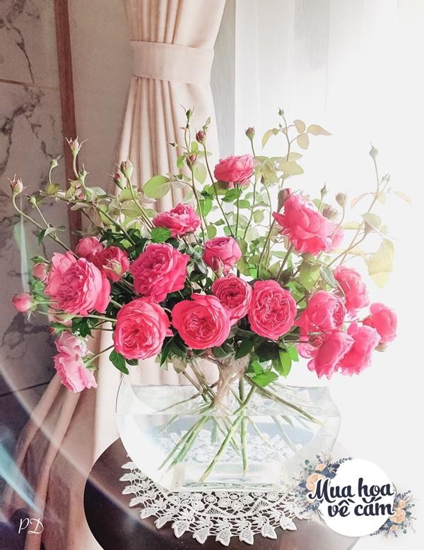 Cắm hoa tươi sợ nhanh héo, cô giáo Hà Nội mách chỗ đặt bình chơi được 2 tuần - 3