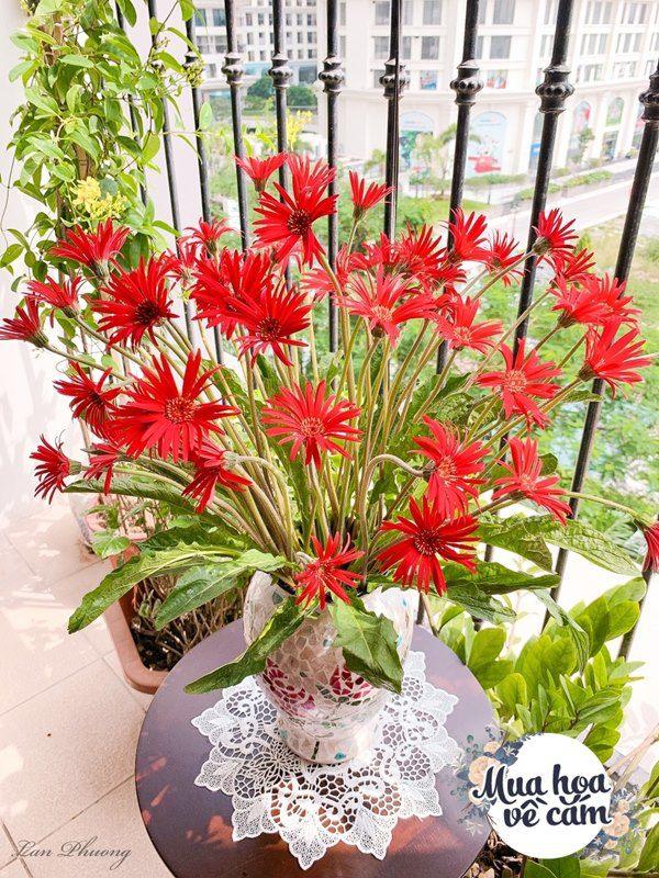 Cắm hoa tươi sợ nhanh héo, cô giáo Hà Nội mách chỗ đặt bình chơi được 2 tuần - 24