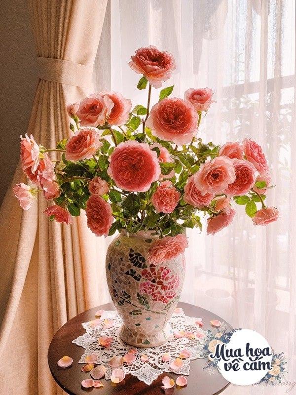 Cắm hoa tươi sợ nhanh héo, cô giáo Hà Nội mách chỗ đặt bình chơi được 2 tuần - 26