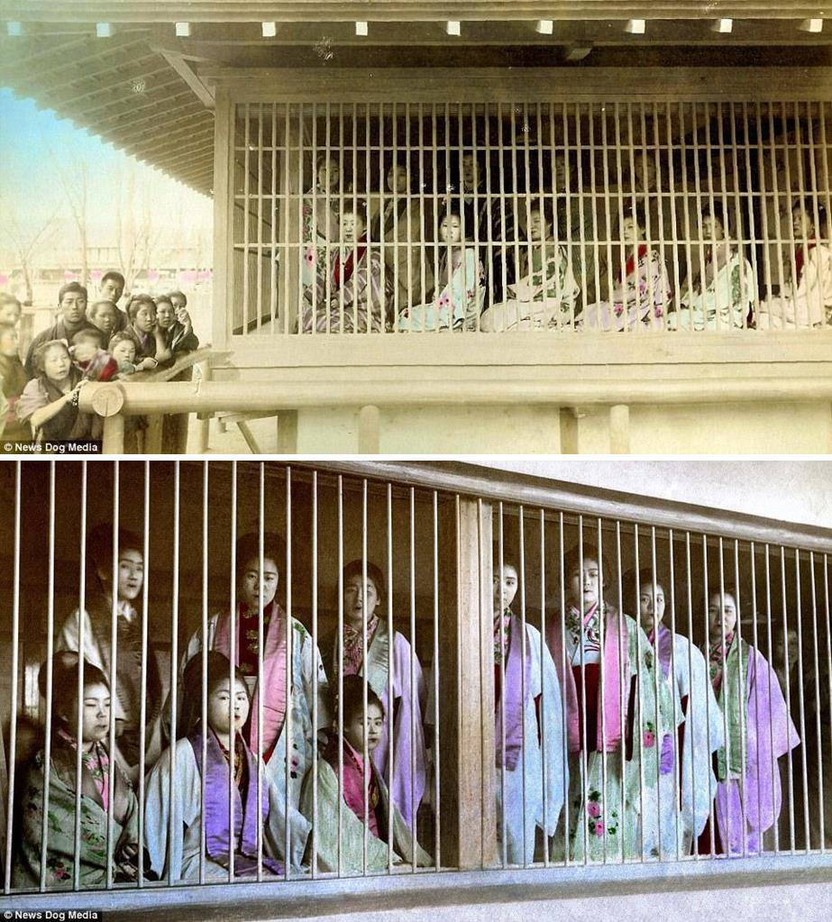 Kỹ nữ được trưng bày trong lồng ở Nhật 100 năm trước và câu chuyện làm đẹp để thoát thân - 3